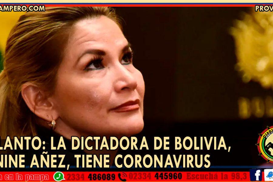 ADELANTO: La dictadora de Bolivia, Jeanine Añez, tiene coronavirus