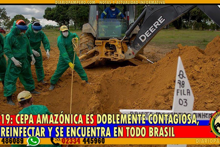 COVID-19: cepa amazónica es doblemente contagiosa, puede reinfectar y se encuentra en todo Brasil